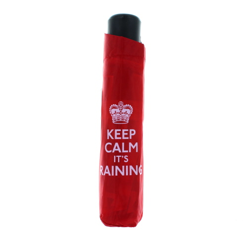 Keep Calm It's Raining Umbrella