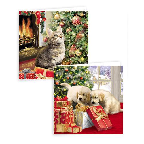 Kitten Christmas Cards.Gift Maker Traditional Puppy And Kitten Christmas Cards 10 Pack