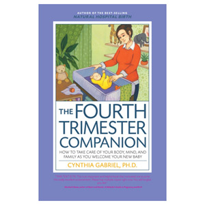The Fourth Trimester Companion - How to Take Care of Your Body Mind and Family