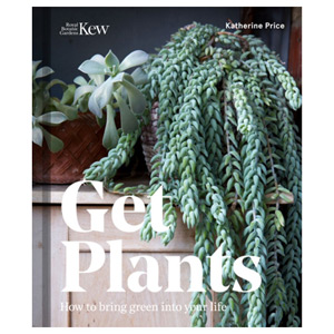 Get Plants - How to Bring Green into Your Life