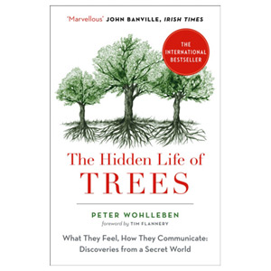 The Hidden Life of Trees - The International Bestseller - What They Feel