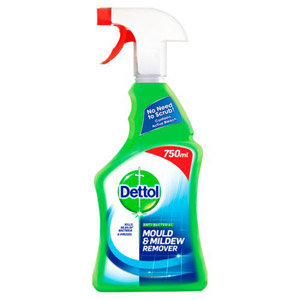 Dettol Mildew Remover Spray