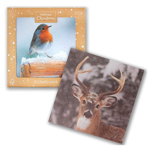 Waitrose 10 Photographic Robin and Stag Cards